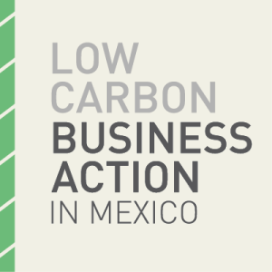 [:es]LIFE Smart Hospital participa en el evento LOW CARBÓN BUSINESS ACTION IN MÉXICO[:en]LIFE Smart Hospital, present in the European programme LOW CARBON BUSINESS ACTION IN MÉXICO[:]